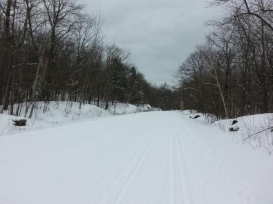 Pistes de ski et grisaille