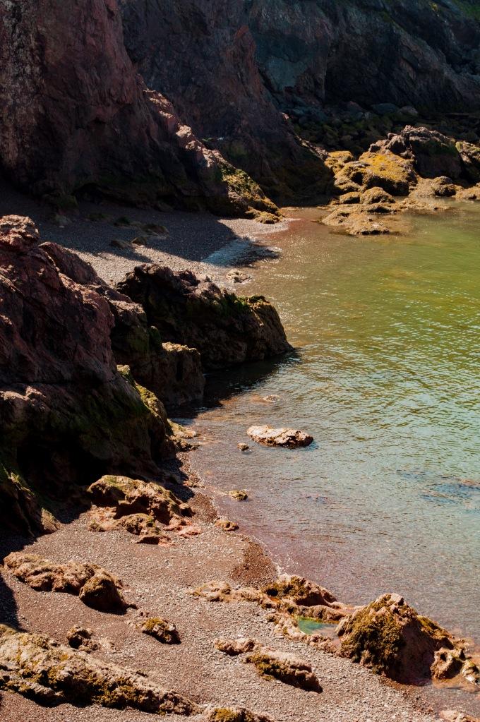 Sentier vers Seal Cove 4